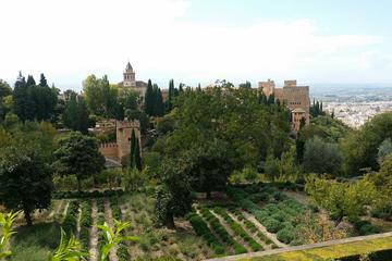 Private ganztägige Tour zur Alhambra...