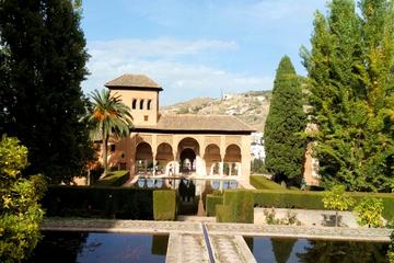 Private or Group walking tour at the Alhambra