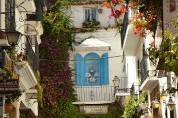 Private walking tour in Marbella