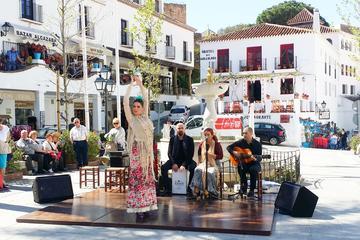Recorrido privado de medio día en Mijas Pueblo desde Marbella