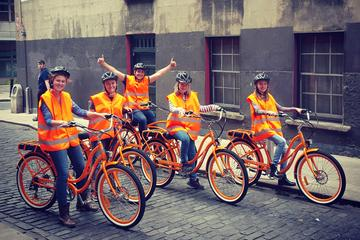 Tour met elektrische fiets in Dublin