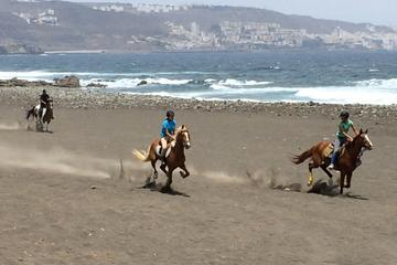 Private Half-Day Beach Horse Riding...