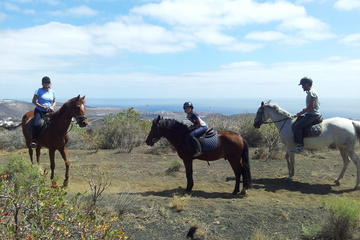 Volcanic Horse Riding Tour in Gran...