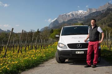 Excursion unique de 3heures à la découverte des vins - demi-journée...