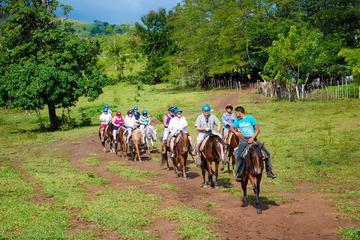 Halfdaagse safaritour van de Dominicaanse Republiek vanaf Punta Cana