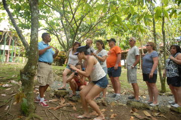 Safári de meio dia na República Dominicana saindo de Punta Cana