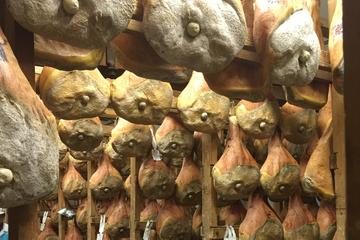 Euganean Hills and Ham Production Farm Private Day Tour from Padua