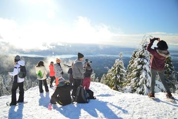 Dog Mountain Snowshoeing and Photography Tour