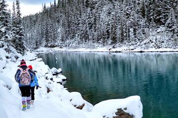 Recorrido fotográfico con raquetas para nieve en el lago Garibaldi