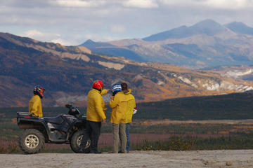 Day Trip Classic ATV Adventure with Back Country Dining near Healy, Alaska