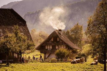 Tour individuale del museo svizzero all'aperto di Ballenberg