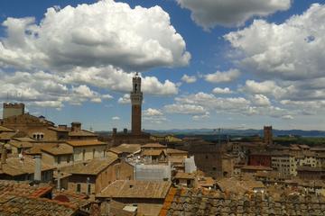 Excursão particular: excursão a pé por Siena