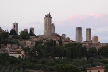 Private tour: San Gimignano Guided Waking Tour