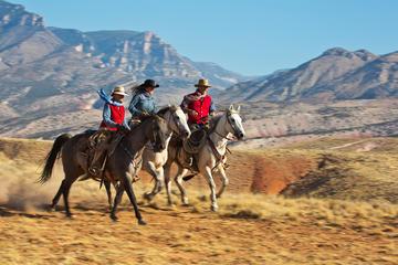 Aventura de día completo a caballo...