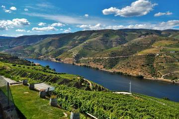 Visite guidée de la vallée du Douro au départ de Porto