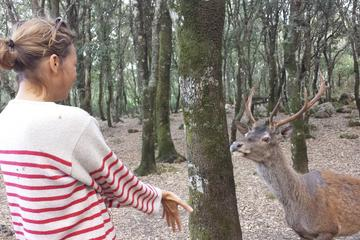 Excursão a pé na reserva natural de Cannoneris