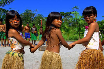 Santos: Full Day Rain Forest and Indian Reservation Tour