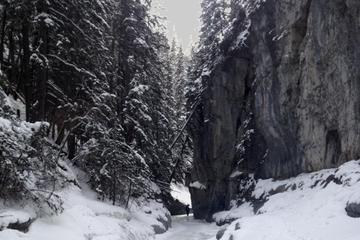 Winter Canadian Rockies Canyon Hike