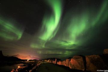 Northern Lights Chasing in Lofoten