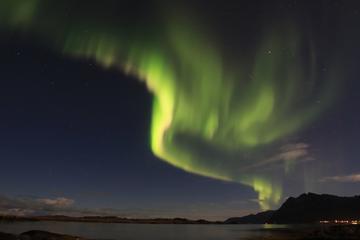 Northern Lights Chasing in Lofoten...