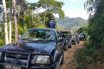 Full-Day Kuala Lumpur 4WD Rainforest Tour