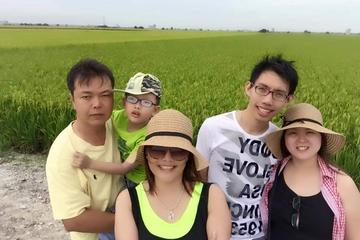 Rice Fields and Fireflies Tour...