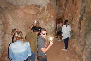 Olympus Safari Tour