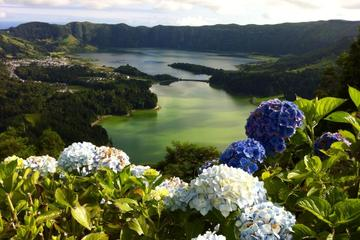 Sete Cidades Half-Day from Ponta...