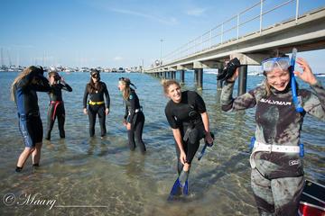 Mornington Peninsula Free-Diving Beginner Course