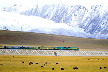 Small-Group 6-Night Lhasa to Everest Tour: Train from Xining
