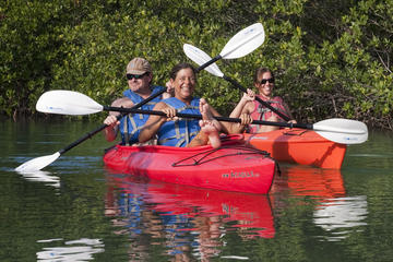 4 Hour Kayak and Backcountry Snorkel Tour