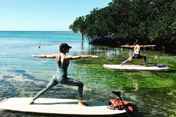 Key West Paddleboard Yoga