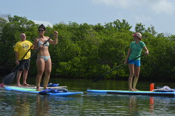Key West Stand Up Paddleboard Rental with Optional Lesson