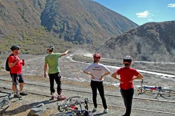 Mountain Bike Bull Circuit