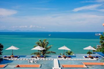 Half-Day Maithon Island Trip Including Dolphin Spotting by Catamaran from Phuket