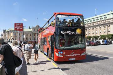 Excursão pelo litoral: Passe diário em ônibus vermelhos com várias...