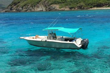 Private Powerboat Tour from St. Thomas and St. John