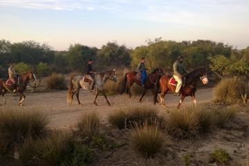 3 heures d'équitation avec dîner et hébergement au départ d'Essaouira
