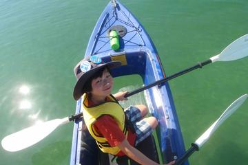 Batemans Bay Full-Day Tour from Canberra Including Kayaking