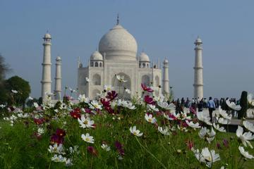 1-Day Private Tour to Taj Mahal from Delhi by Train with Meals