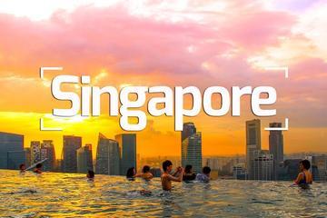 A Delightful Dozen in Singapore
