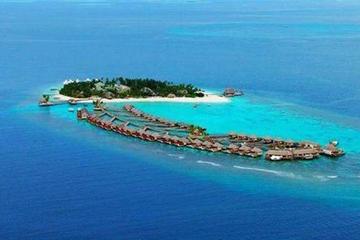 Full-Day Bintan Island Tour from...