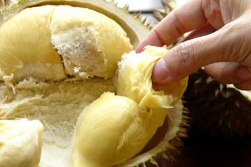 Full-Day Durian and Shopping Tour in...