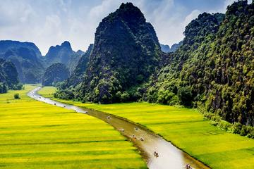 Hoa Lu and Tam Coc Full-Day Tour from...