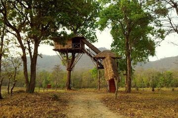 2-Night Private Tour: Masinagudi National Park Wildlife Tour from Coimbatore