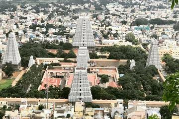 Day trip to Tiruvannamalai Temple and Sri Ramana Ashram from Pondicherry