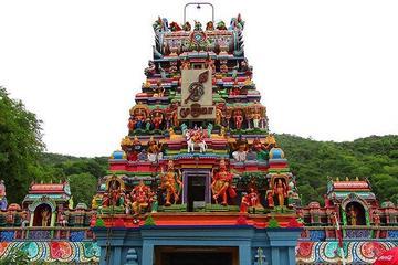 Visit - Thiruparankundram Murugan Temple & Pazhamudhir Solai from Madurai