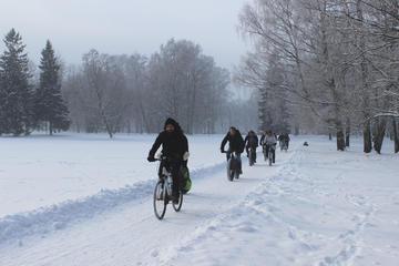 Excursión de invierno en bicicleta de...