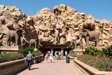 Private Sun City Day Tour from Johannesburg