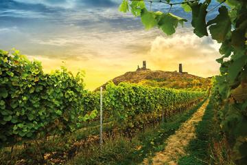 Prague Bohemian Wine Tasting and Countryside Small-Group 4x4 Day Trip with Lunch